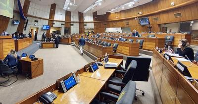 Diputados aceptan veto del Ejecutivo a proyecto que anula facturas de ANDE y ESSAP