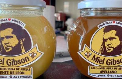 Productor de miel chilena asegura que recibió amenazas de los abogados de Mel Gibson