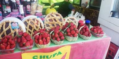HOY / Variedad de frutillas en Areguá