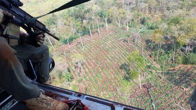 SENAD en cooperación con Brasil inicia operativo contra el narcotráfico en Amambay