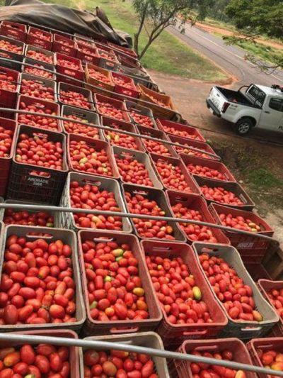 Requisan 15.000 kilos de tomate de contrabando en Horqueta