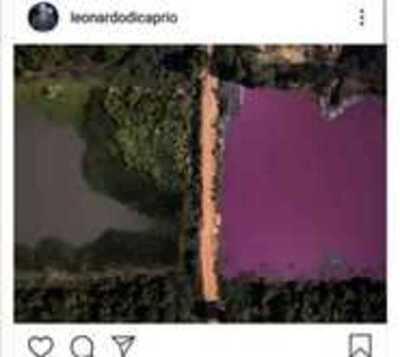 Leo Dicaprio alza la voz ante contaminación laguna de Limpio