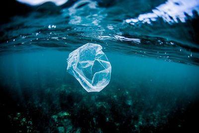 Cantidad de plástico en el Atlántico es 10 veces mayor de lo estimado