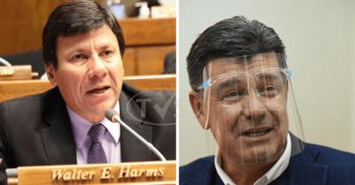 """Diputado Walter Harms: """"De Efraín no se puede esperar nada coherente o patriótico"""""""