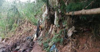 Dictaminan sancionar a matadería por verter desechos al arroyo