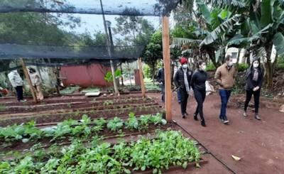 Crearán huertas comunitarias para beneficiar a 1.500 familias