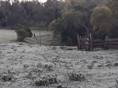 Heladas, escarchas y temperaturas bajo cero en el centro y Sur del país
