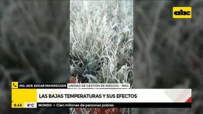 Zona sur y centro del país, las más afectadas por las heladas