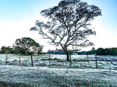 Temperaturas bajo cero marcaron un registro histórico en el país