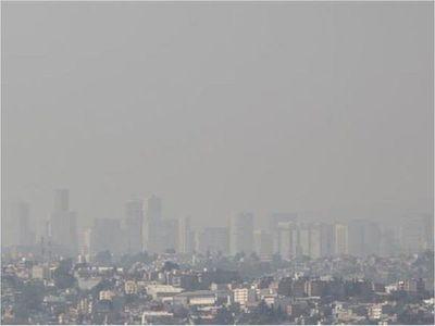Científicos alertan que el ozono ya amenaza la biodiversidad mundial