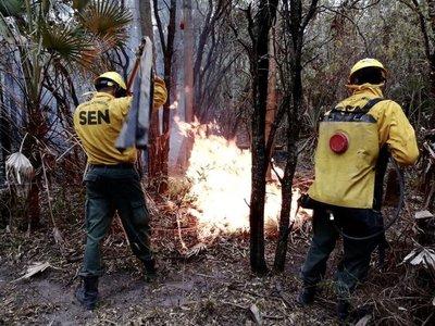 Brigada Forestal de la SEN controla incendio en el bajo Chaco