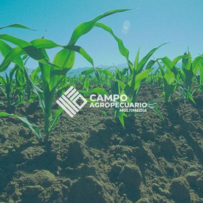 Congreso Internacional convoca a profesionales del agronegocio