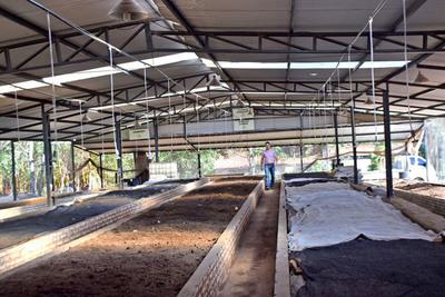 Humus y compost para la sostenibilidad del suelo
