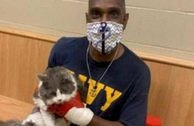Hombre fue a un refugio para adoptar una mascota tras perder a su gato y encontró al felino en el recinto