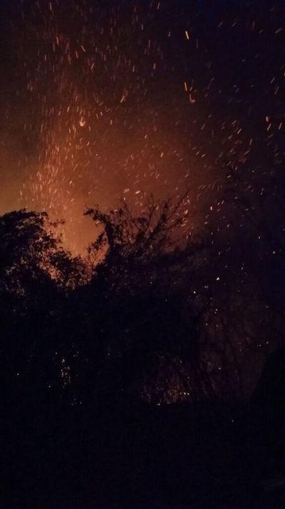 Incendios forestales: MADES no cuenta con equipos para el combate, solo cuantifica los daños, afirman