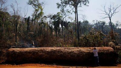Deforestación en Brasil pone en riesgo el acuerdo UE-Mercosur