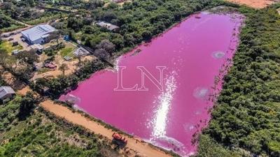 HOY / MADES constata que empresa sigue arrojando desechos en Laguna Cerro