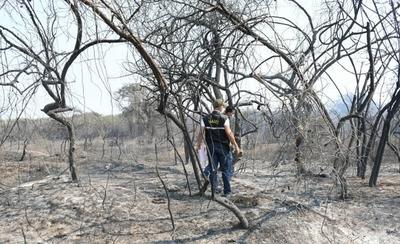 HOY / Incendio en la Bahía de Asunción afectó el hábitat de aves playeras y migratorias