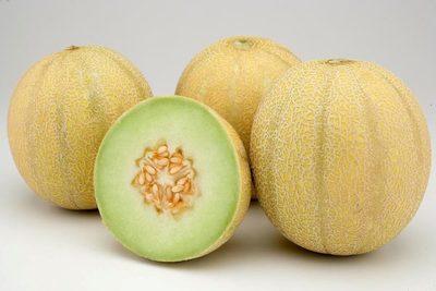 El estado brasileño de Ceará aumenta sus exportaciones de melón en el primer semestre