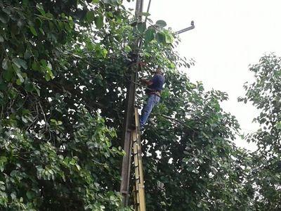Parte del barrio Santa Librada estará sin energía eléctrica