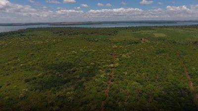 Legislación permite proteger bosques que en un 80% están en propiedades privadas