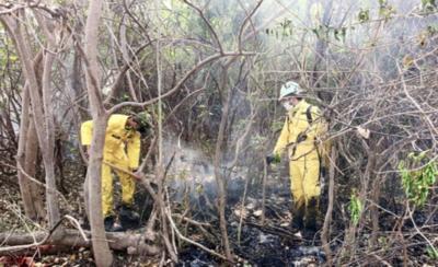 HOY / Emergencia Nacional coopera con Bomberos para sofocar incendios