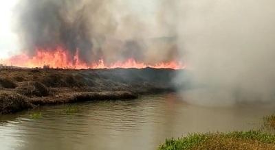 Titular de la SEN lamenta inconsciencia de gente que provoca incendios