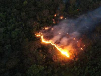 Ejecutivo exhorta a la conciencia y estricto cumplimiento de la ley para la prevención de incendios – Diario TNPRESS
