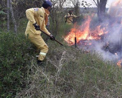 Bomberos piden evitar quemas de basuras – Diario TNPRESS