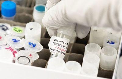 """Unas cinco candidatas a  vacuna arrojan resultados """"prometedores"""""""