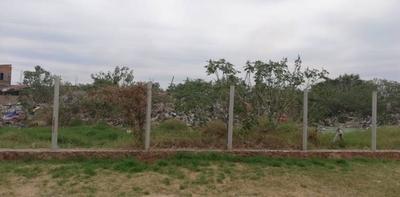 HOY / Intervienen vertedero clandestino del Bañado Sur: Dueña cobraba para arrojar basura
