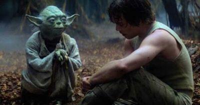 Aparece un Yoda Joven en Star Wars