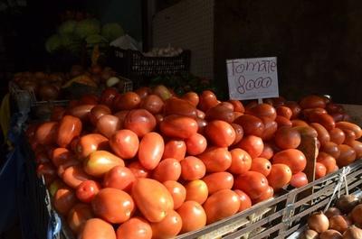 Guerra del tomate: o el gobierno libera importación o llevarán pleito a la justicia