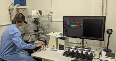 La Nación / Mercosur adquiere 70 mil test de COVID-19 para Paraguay a través de Fiocruz y el Institut Pasteur