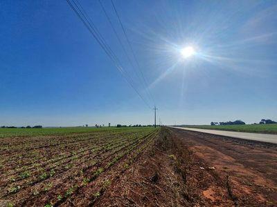 Meteorología anuncia día soleado con vientos del noreste