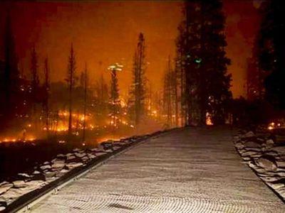 Evacuan a 200 personas en California por voraz incendio