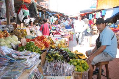 Financiarán propuestas de apoyo a sectores sociopolíticos y económicos post pandemia