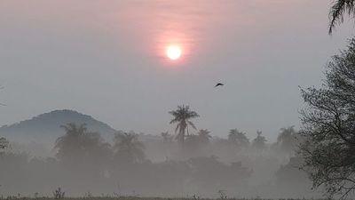 Misiones; aumento de temperatura desde hoy con probabilidades de lluvias