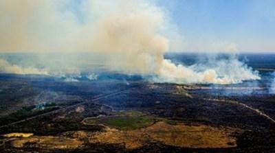 Incendios en el Pantanal de Brasil amenazan una reserva de jaguares