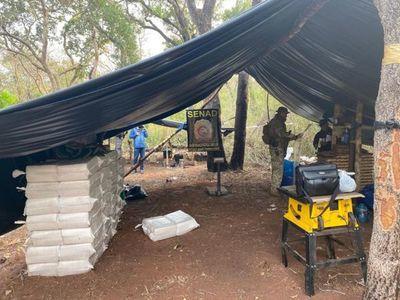 SENAD incauta más de 3 toneladas y media de marihuana en Amambay