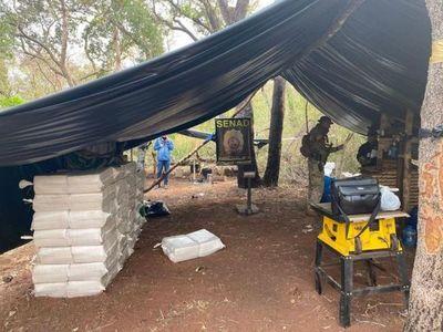 Senad incauta más de 3.500 kilos de marihuana en Amambay