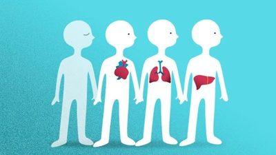 Donar órganos, un gran gesto de amor