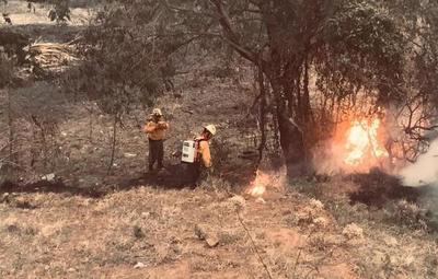 Incendio registrado en la ruta Luque-San Bernardino fue controlado