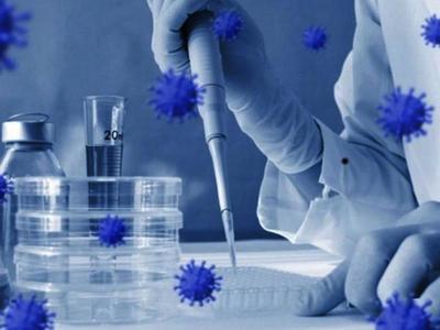 Incógnitas, certezas y dudas tras seis meses de pandemia