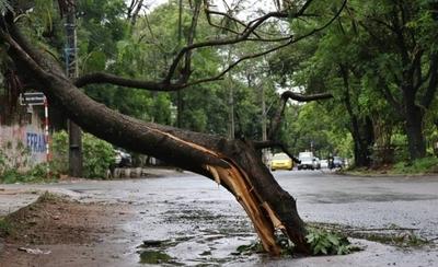 HOY / Varias ciudades quedaron sin electricidad tras fuertes vientos