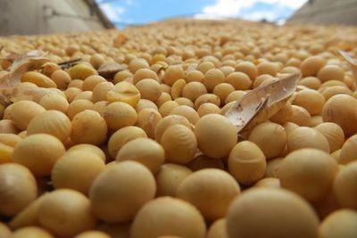 Exportaciones de soja superan 5 millones de toneladas, pese a adversidades