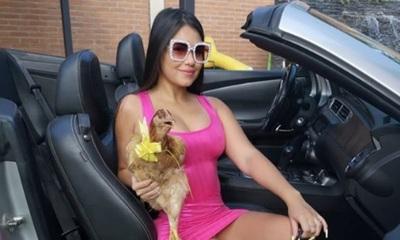'Hortensia' la gallina de Laurys Diva fue lleva de urgencias al veterinario