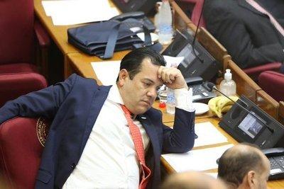 Salomón convoca a sesión extra del Senado para definir pérdida de investidura de Friedmann