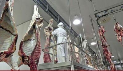 """Athena asegura que el contrato con FrigoNorte """"no representa riesgo para el mercado de la carne"""""""