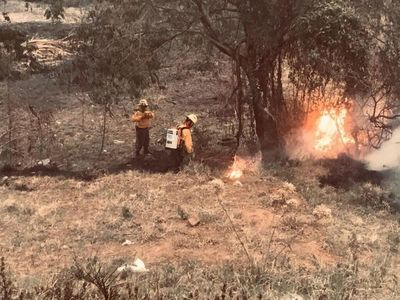 Es difícil obtener identidad de responsables de incendios forestales, admite ministro